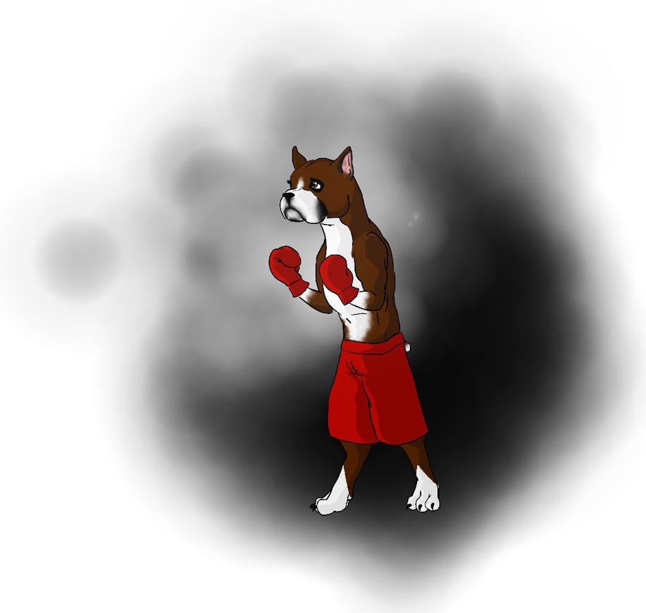 Boxer by Alisha-town