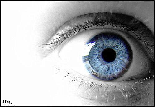 eye 2 by reallilith