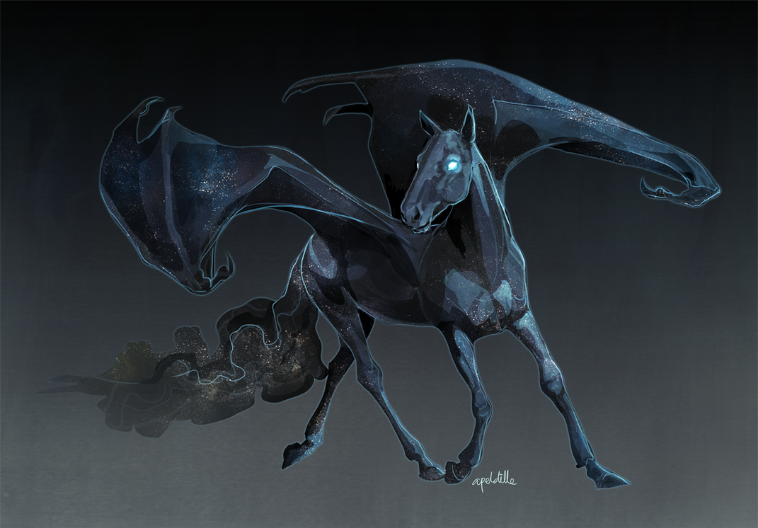 Night Sky Demon Horse by apeldille