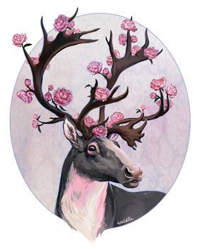 Reindeer Roses