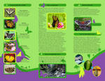 Butterfly House Brochure pg.2