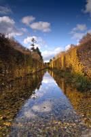 Golden Autumn by c1n3kk
