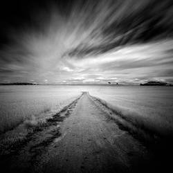 Path in the field by correiae