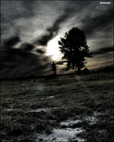 The Tree and Me by Jason-Little