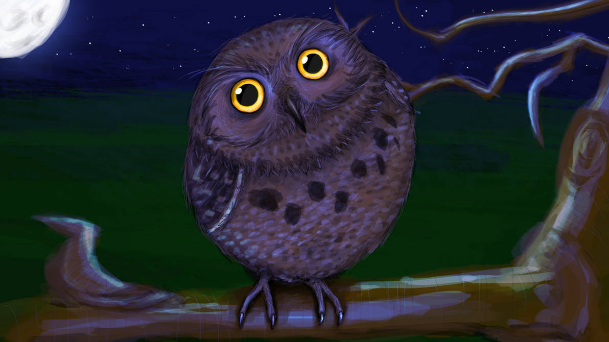 Owl by JaNightmare
