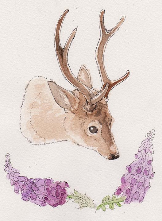 Little Deer by chillcats
