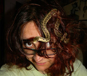 Medusa Syndrome: Part 1 by ArachnoWolf