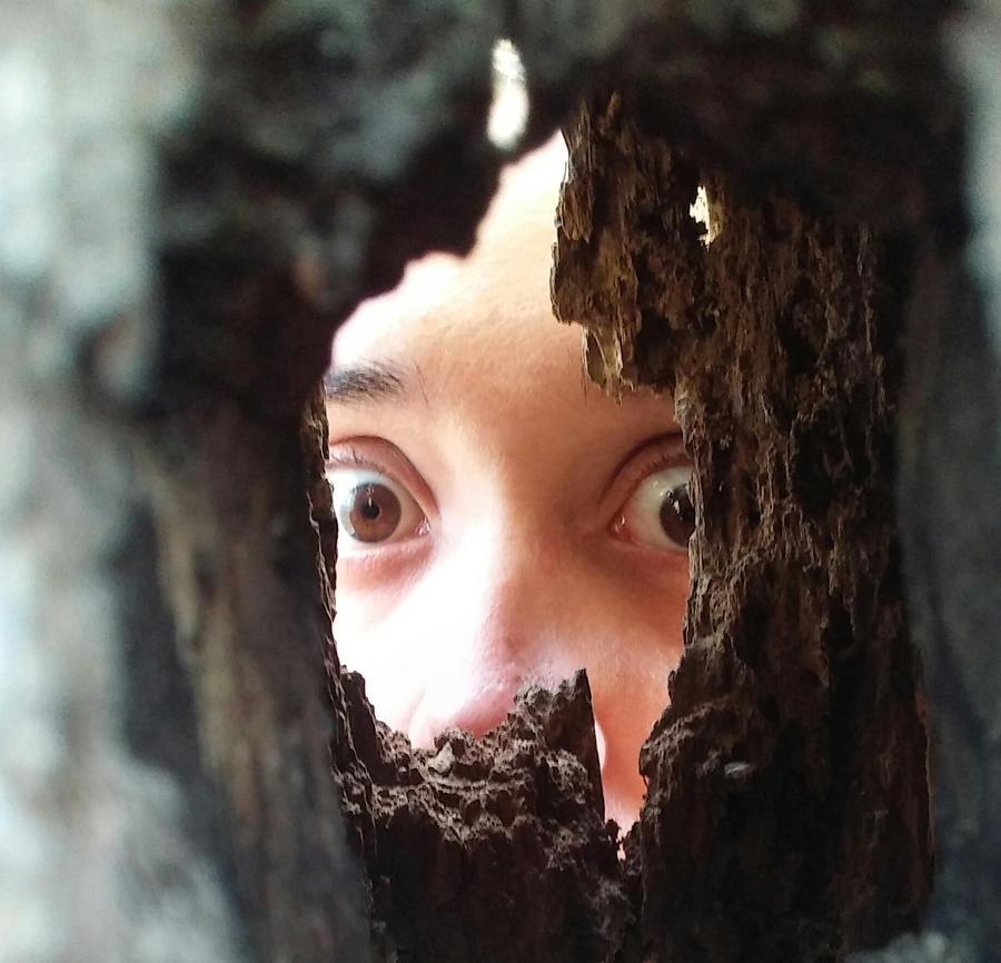 ArachnoWolf's Profile Picture