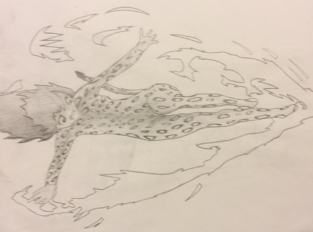 Cheetah by isaiahrobinson48