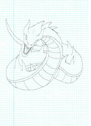 Dragon type : Wurm