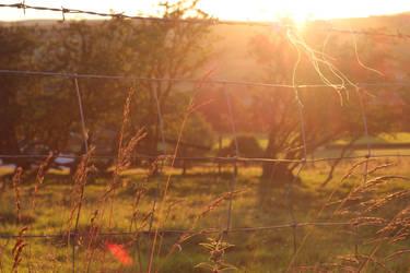 Strong dusk by kwijiboenator