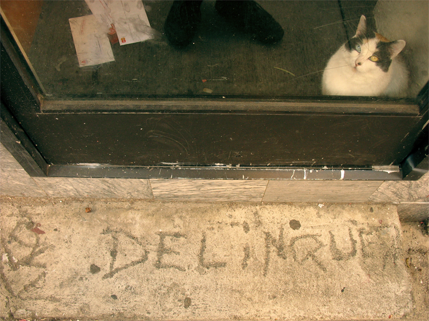Delinque by yousko