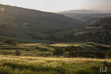 soft hills. by OnnoG