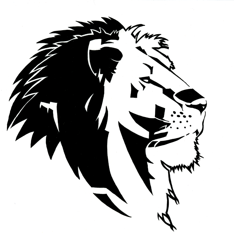 12 Best lion sketches images  Lion sketch Drawing s
