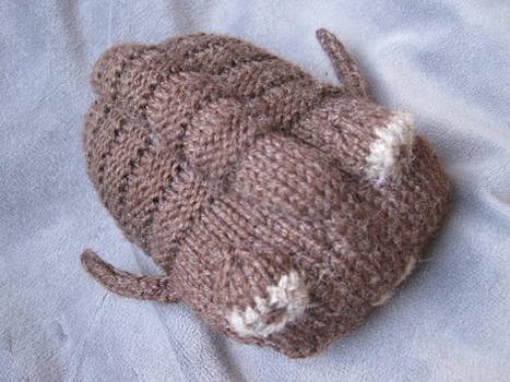 Knitted Trilobite