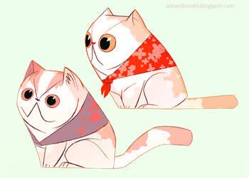 Smoosh-Face Cats by lemurali