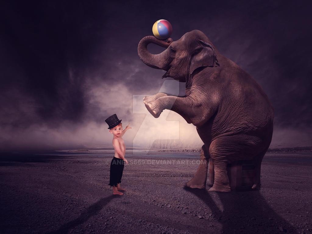 boy and Elephant