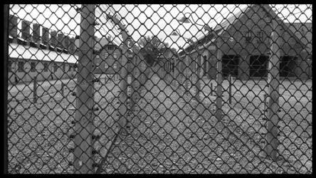Auschwitz by miguelpereira