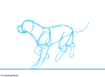 Dog run cycle animation SCRAP by GlowyDaBstrd