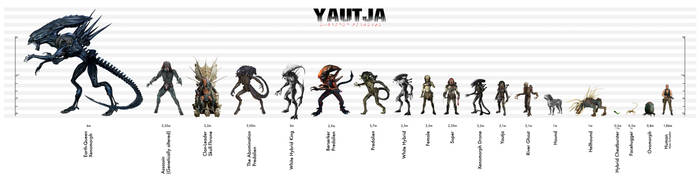 Yautja Size Chart - Expanded Universe by Risen-From-The-Ruins