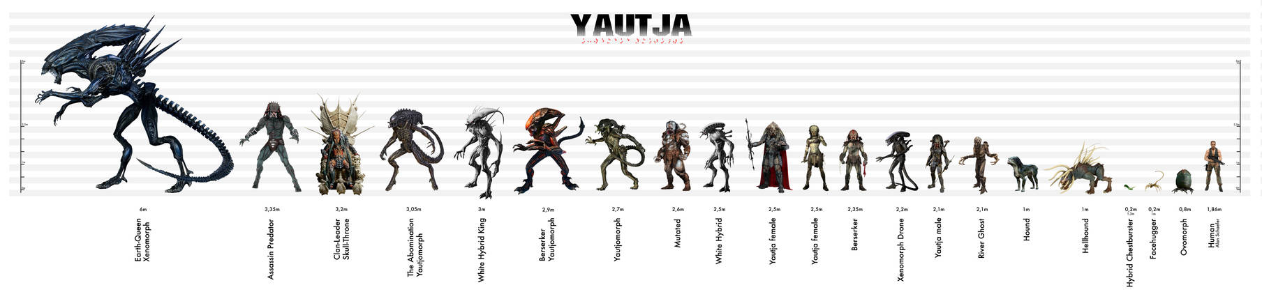 Yautja Size Chart Expanded Universe By Risen From The Ruins On Deviantart