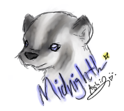 Midnight the Badger by lil-ashi