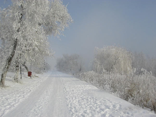 Winter_Aspect by simgreensoul