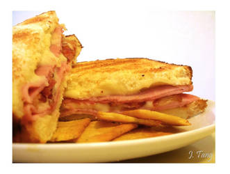 Bacon, Ham, and Cheese by gnatcage