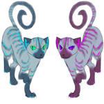 Siamese Cheshires