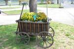 Potato Cart - Bacharach