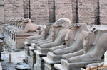 Temple at Karnak 5