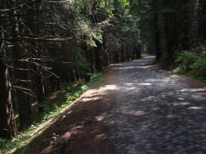 deadwood II