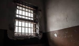 Prison ward No. 2