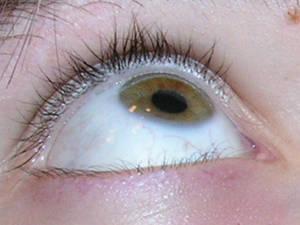Eye Shot 03