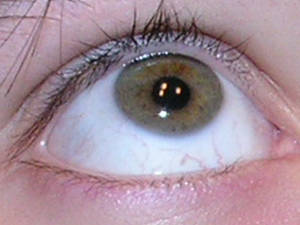 Eye Shot 05