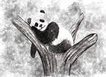 panda by fhis21