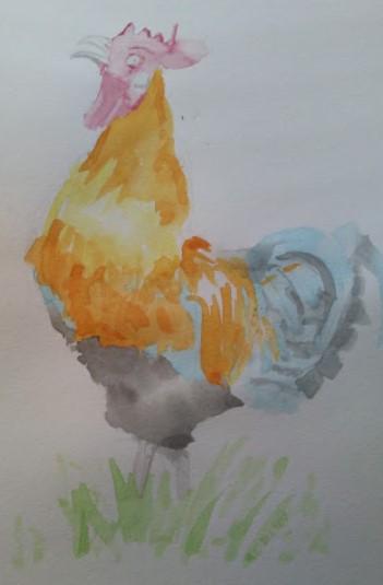 Rooster by cetancretan