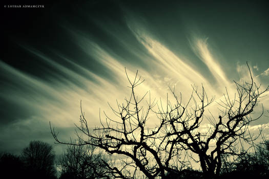 Sky Impression III