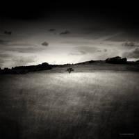 Through The Dark by DREAMCA7CHER