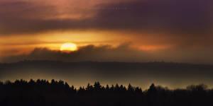Sunset In Wilderness