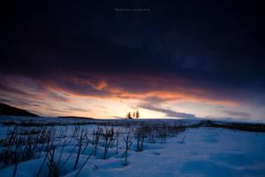 Orange Cloud by DREAMCA7CHER