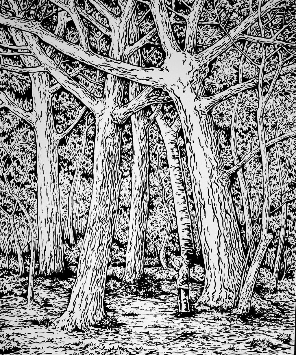 Una Selva Oscura by asantell