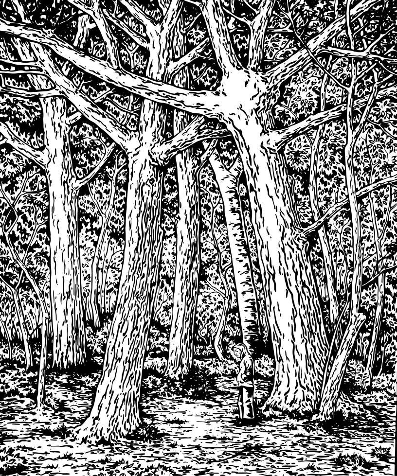 Una Selva Oscura-vectorized by asantell
