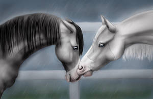 Kiss the rain by Mistyhills