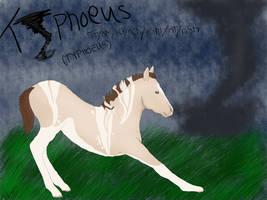 Typhoeus ID 1110