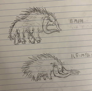 Porcupine cows: a grim warning