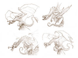 Dragon Sketches by JakeParker