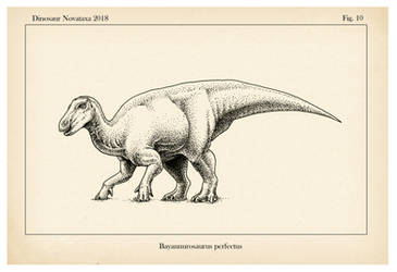 Bayannurosaurus perfectus by FOSSIL1991