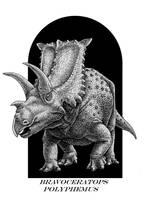 Bravoceratops polyphemus