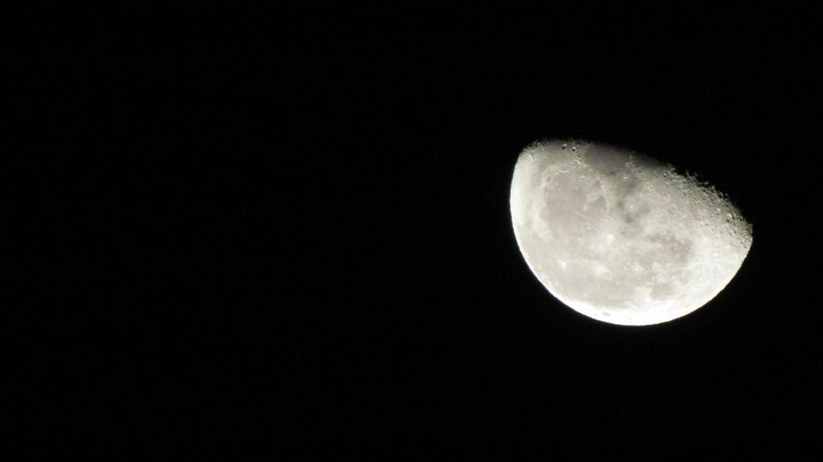 We Love The Moon by DragonXero